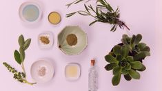 We are looking to work with health and wellness professionals Essential Oil Companies, Essential Oil Uses, Therapeutic Grade Essential Oils, Doterra Oils, Health And Wellness, Pure Products, Health Fitness, Essential Oils