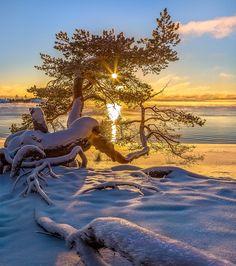 Decoration of the sun - Karelia. November 2016 The season of my author photo tours on winter Lake Ladoga opened! Amazing Photography, Landscape Photography, Nature Photography, Beautiful World, Beautiful Places, Beautiful Pictures, Winter Pictures, Nature Pictures, Winter Magic
