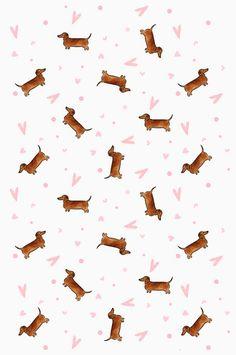 Ideas wallpaper fofos cachorro salsicha for 2019 Dog Wallpaper Iphone, Iphone Background Wallpaper, Dachshund Puppies, Dachshund Love, Dachshunds, Daschund, Weenie Dogs, Cute Disney Wallpaper, Cute Animal Drawings