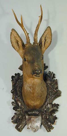 buy antique deer heads, stag heads and other trophys direct from the south of germany. in our gallery you'll find a selection a fine rustic and black forest antiques. Deer Heads, Stag Head, Western Furniture, Log Furniture, Furniture Design, Rena, Forest Decor, Wood Carving Designs, Cow Skull