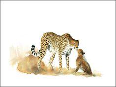 African Wildlife art in watercolors by Sue Dickenson