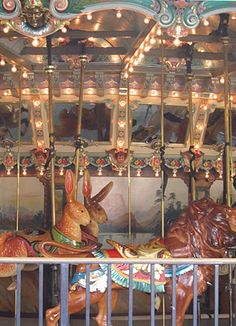 We love our carousel because... the rabbits never looses the race.
