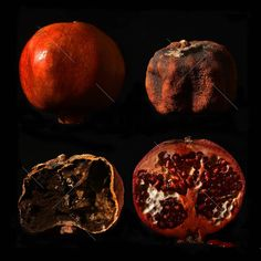 #blood  or  #juice ? # drops #pomegranate #mothernature #metaphysics #ageing #degradation #youth #death #fruit #ripe #dried #time #red #alive #dead #inside #outside #awareness Inside Outside, Dead Inside, Dead Alive, Art Alevel, Ageing, Macro Photography, Pomegranate, The Outsiders, Juice