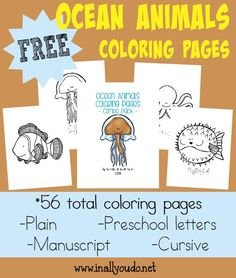 These SUPER CUTE Ocean Animals Coloring pages & Emergent Readers are perfect for learning more about the ocean!! 56 total pages :: www.inallyoudo.net