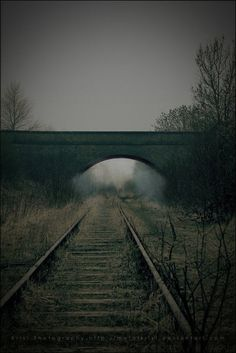 """""""You may be deceived if you trust to much but you will live in torment if you don't trust enough""""Frank Crane Criminal Minds quote from""""Closing Abandoned Train, Abandoned Places, Criminal Minds Quotes, Film Inspiration, Train Tracks, Railroad Tracks, Mists, Paths, Beautiful"""