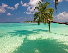 Путешествия✈️ Wish, Tropical, Album, Beach, Water, Hot, Outdoor, Vacation, Gripe Water