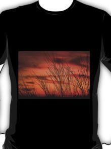Orange sky with branches T-Shirt