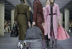 Miu Miu  :  Autumn / Winter     2013