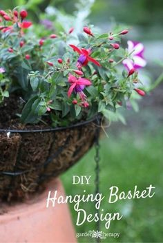 Design Hanging Baskets Like a Pro. Using the Clock Face Planting Method makes it so simple that anybody can make a gorgeous hanging basket at home.