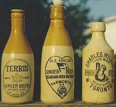 buy giger brew starter and make your own ginger beer Antique Bottles, Vintage Bottles, Bottles And Jars, Hot Sauce Bottles, Glass Bottles, Beer Bottles, Ginger Beer, Ginger Jars, Frappuccino Bottles