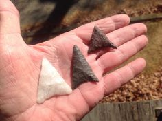 the Levanna point is a Late Woodland style. These are from coastal sites in Rhode Island. From left to right, the materials are quartz, hornfels, and red felsite.