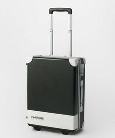 Pantone Carry Case ... I'm a fan of all things Pantone Universe ...