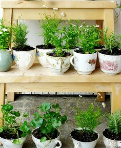If you've ever wanted to grow your own herb garden, now's your chance. Just dust off some old teacups, drill a small hole in the bottom of each one and voila! Your herbs in a cup will be looking—and smelling—pretty in no time.