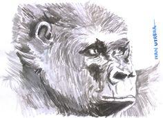 gorila en acuarela