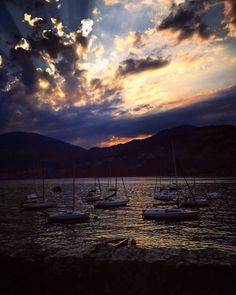"93 Likes, 2 Comments - Fer ✨ Travel Blogger (@fernandapintogodoy) on Instagram: ""Postcards from Italy 🇮🇹❤️✈️ • #feradventures #bellaitalia #lagodigarda #lifeisbeautiful #lakelife…"""