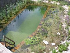 swimming pond + decorative natural part