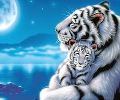 """DIY Diamond Painting """"Tiger Family in Moonlight"""" Full Drill Diamond Embroidery Painting Kits Living Room Bedroom Wall Decor Painting Beautiful Cats, Animals Beautiful, Cute Animals, Anime Animals, White Tiger Cubs, White Lions, Tiger Moms, Tiger Wallpaper, Tiger Pictures"""