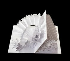 Papierkunst von Peter Dahmen