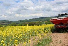 D�nge-Verordnung stellt Landwirte vor Dilemma