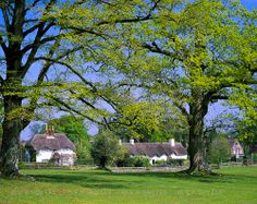 This picture of Swan Green, New Forest, Hampshire, England. Hampshire England, England Ireland, English Cottages, Irish Sea, New Forest, North Sea, Northern Ireland, Great Britain, Danish