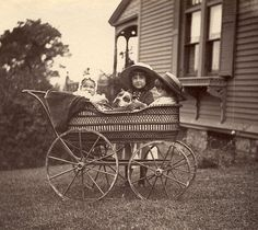 C153 Vtg Photo silver gelatin PIT BULL DOG IN BABY CARRIAGE Brookline MA c 1887