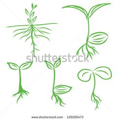 Set hand draw sprouts plants seeding vector 1492683 – by kumdinpitak on VectorSt… - Modern Seed Tattoo, Roots Tattoo, Vector Graph, Free Vector Art, Baby Tattoos, Small Tattoos, Sprout Logo, Logo Mano, Plant Tattoo
