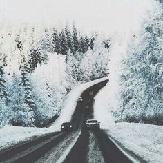 snow, winter, and road image Winter Schnee, Winter Photography, Travel Photography, Winter Is Coming, Adventure Is Out There, Winter Christmas, Winter Holidays, Oh The Places You'll Go, The Great Outdoors