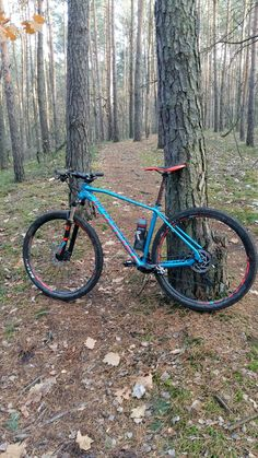 On the single track mtb in Kampinoski Park with my Mondraker Leader R 29""