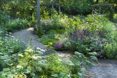 Great planting design by Sarah Price at Battersea ...