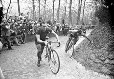 Tour of Flanders, 1952