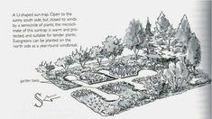 La haie brise vent   Permaculture Design