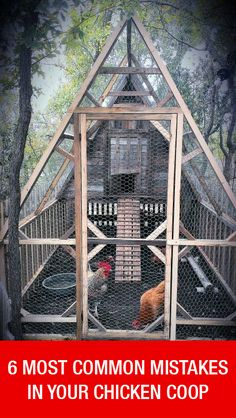 How To Avoid 6 Most Common Mistakes In The Chicken Coop: www.mychickencoop...
