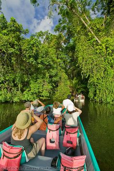Jungle canal tour in Tortuguero, Costa Rica, Central America   Patrick J. Endres