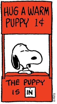Peanuts example. This is just a single cartoon that gives its message quickly without it being multiple slides.