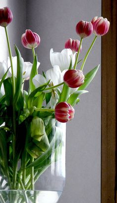 No more droopy tulips: Add a copper coin to the vase to keep your tulips standing tall and straight - even if they are already bending, they will straighten  after you drop a penny in their water!