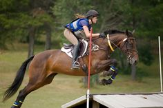 Summer Cross-country in Northern Wisconsin | Flickr - Photo Sharing!