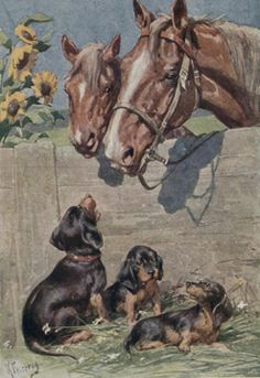 Dachshund Dogs Horses by K Feiertag New Note Cards | eBay