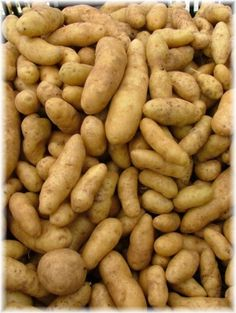 How to harvest and store potatoes and root crops.