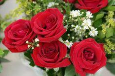 No Blog da Fotografia, uma homenagem aos apaixonados: 'Rosas', por Jair Araújo. Feliz Dia dos Namorados!