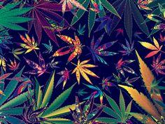 smoke weed<3