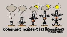 humour Breton - naissance des bigoudènes