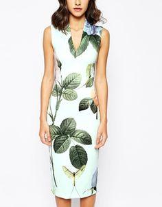 Enlarge Ted Baker Midi Dress in Distinguishing Rose Print