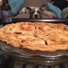 Someone is eyeing my first homemade apple pie #americanbully #dogsofinsta #dogs #bullybreed #bully #bullylife #abkc #pie #food #desserts