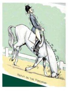 Übungen, damit dein Pferd nicht mehr auf Vorhand fällt