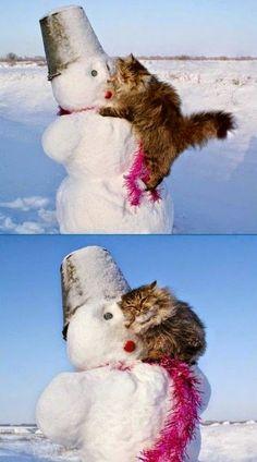 I wuv you, Mr. Snowman