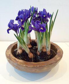 Keramikskål med forår i luften. Ceramic bowl with spring flowers. Copyright by Www.anne-mette.com #keramik #keramikskål #ceramic #ceramicartist #artist #ceramicbowl #notforsale #copyright #pinterest #www.anne-mette.com