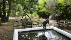 Water fountain at 8 Restaurant, Spier Wine Farm