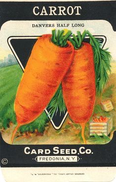 vintage seed packets printable | vintage Carrot (Danvers Half Long) seed packet from the Card Seed ...