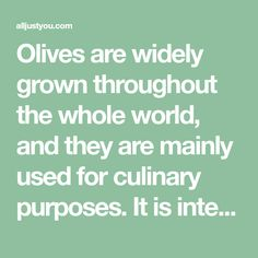 Olives are widely grown throughout the whole world, and they are mainly used for culinary purposes. It is interesting that they have been