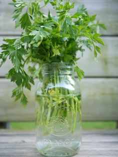 A mason jar can be used to keep fresh/cut herbs fresh